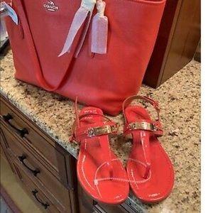 Coach Women's Caterine Flat Sandals